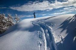 A ciaspolare in Trentino tra natura e delizie