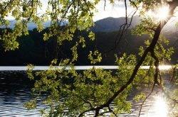 Trentino: Una vacanza indimenticabile al lago di Levico