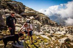 Trentino: Vacanze in Trentino con il cane