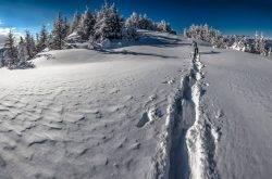 Trentino: Trekking, i percorsi migliori
