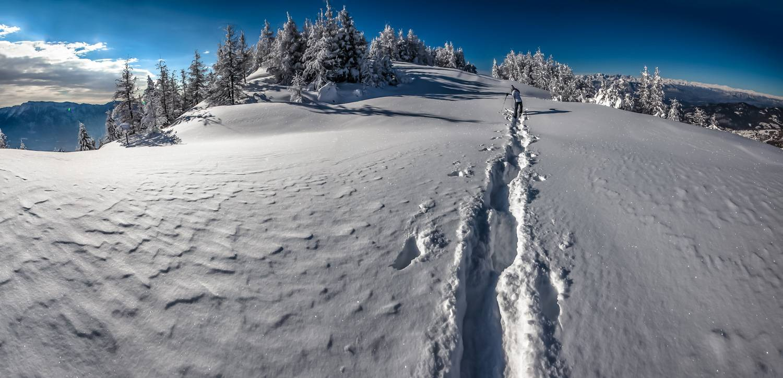 Ciaspole Trentino