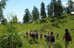 Trentino: Trekking, i passi verso la meta