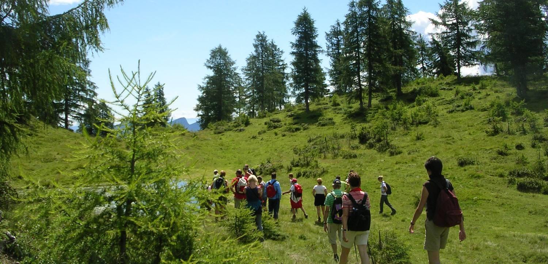 Wandern im Trentino: Schritt für Schritt zum Ziel