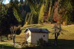 Nordic Walking im Trentino – die Bergwelt genießen