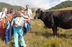 Trentino: Vacanze in un hotel a Levico per la tua famiglia