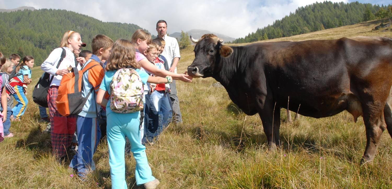 Levico Terme: vacanza nella natura per bambini
