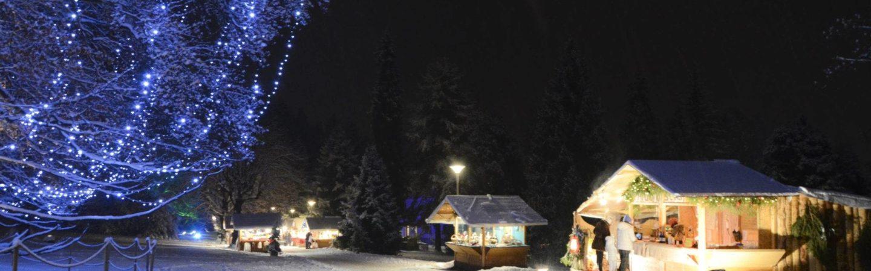 Il mercatino di Natale di Levico Terme si svolge ogni anno nel parco secolare degli Asburgo: immerso nella natura, troverai prodotti tipici del Trentino!