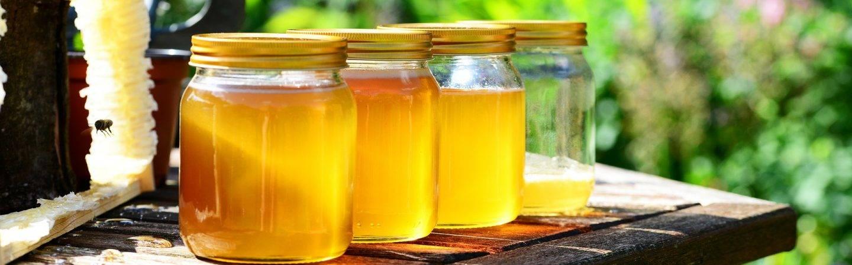 Api, miele, cera, propoli e pappa reale: l'evento dedicato ad apicoltori ed espositori del settore a Levico Terme. Si potrà assistere anche alla dimostrazione di smielatura, laboratori creativo-didattici e dimostrazione di lavorazioni artigianali.