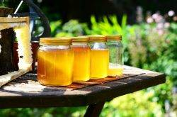 Festival del Miele a Levico Terme