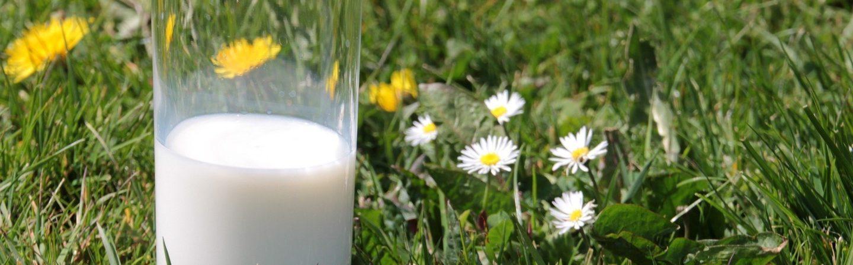 Il tema dell'evento saranno il latte, la lana e derivati a km 0. Un evento speciale per famiglie e turisti a Levico Terme in Trentino