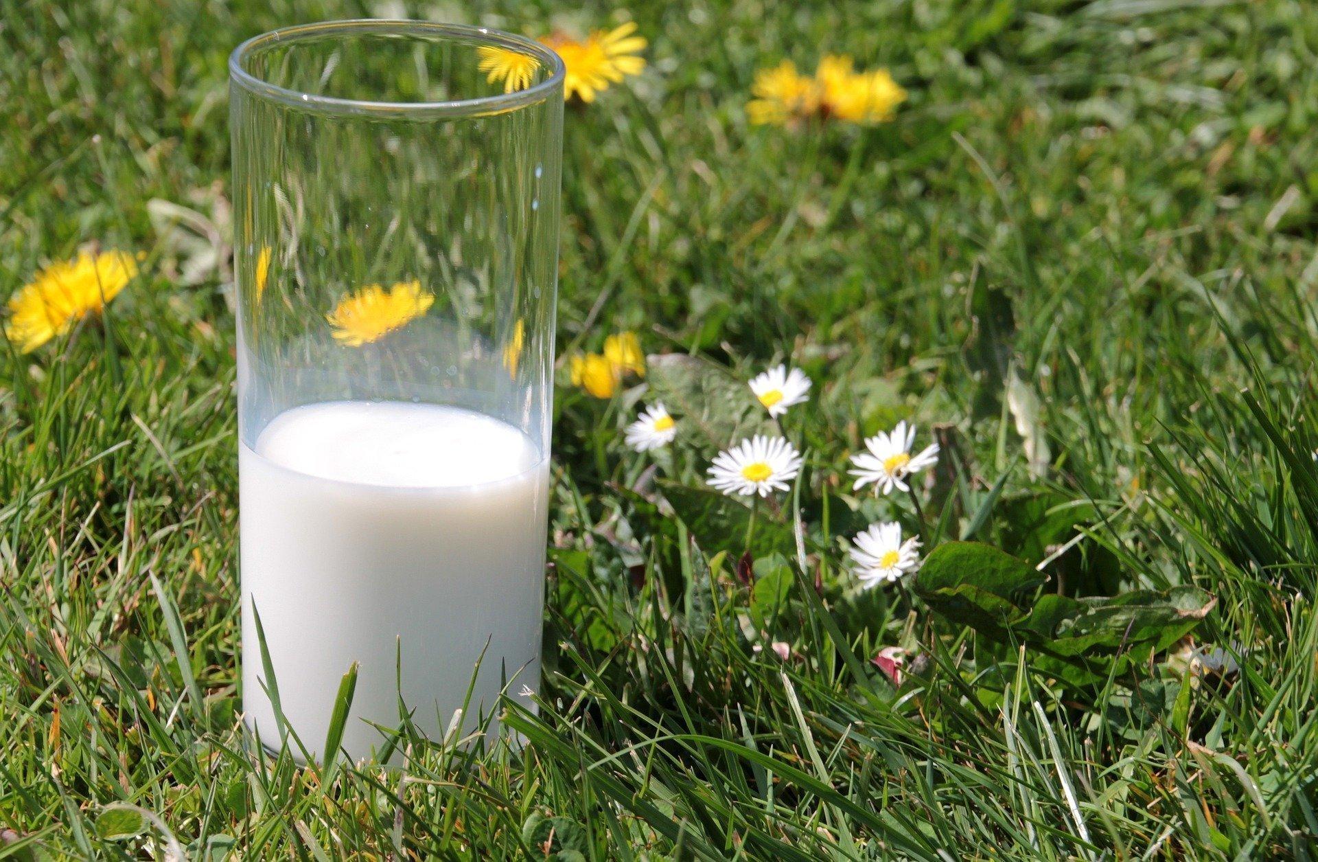 Festival del Latte e della Lana a Levico Terme