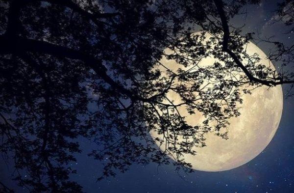 Passeggiata in notturna sotto la luna piena