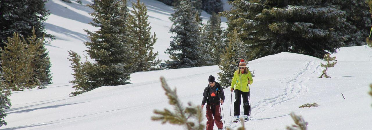 Non solo piste da sci! Levico Terme offre tante proposte per la tua settimana bianca in Trentino: sci di fondo, alpinismo, slittini e tanto divertimento!
