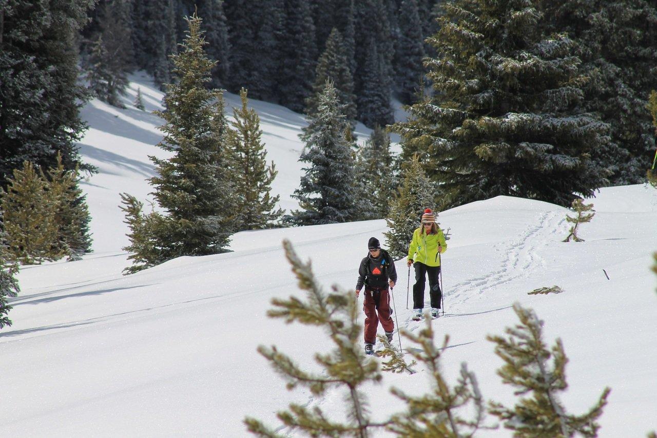 Escursione sulla neve in Trentino